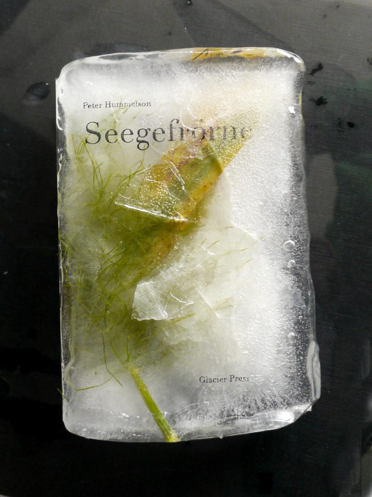 Ice books - ephemeral literature