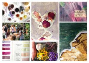 Mit Pflanzenfraben malen, färben und gestalten